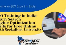 SEO Training in India: Learn Search Engine Optimization Skills for Free Online